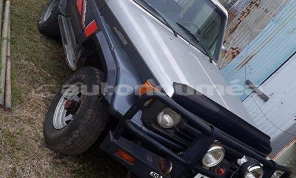 Acheter Occasion Voiture Toyota Land Cruiser Autre à Moindou, Sud