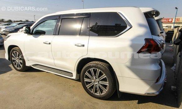 Acheter Importé Voiture Lexus LX Blanc à Import - Dubai, Iles