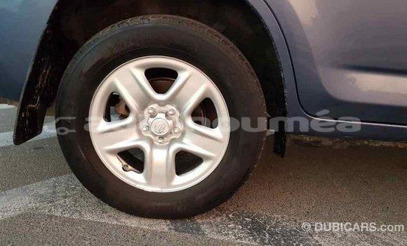 Acheter Importé Voiture Toyota RAV4 Bleu à Import - Dubai, Iles