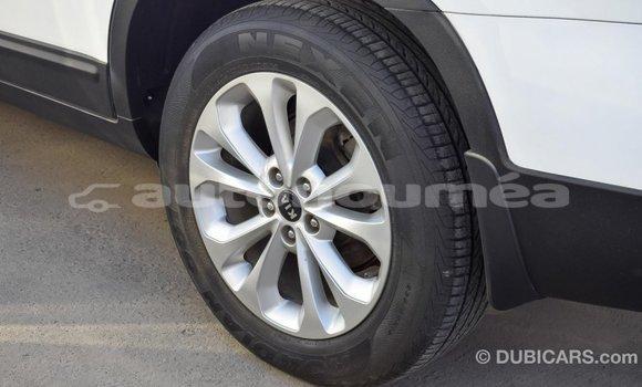 Acheter Importé Voiture Kia Sorento Blanc à Import - Dubai, Iles
