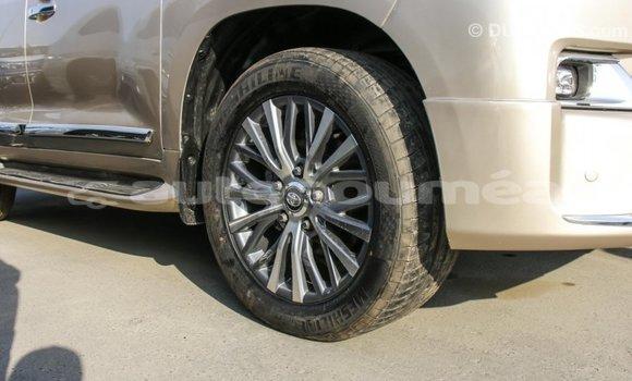 Acheter Importé Voiture Toyota Land Cruiser Autre à Import - Dubai, Iles