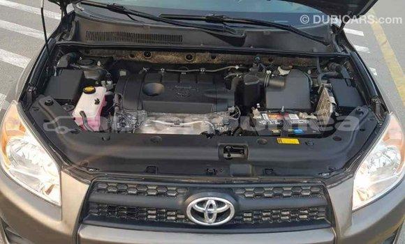 Acheter Importé Utilitaire Toyota HiAce Marron à Import - Dubai, Iles