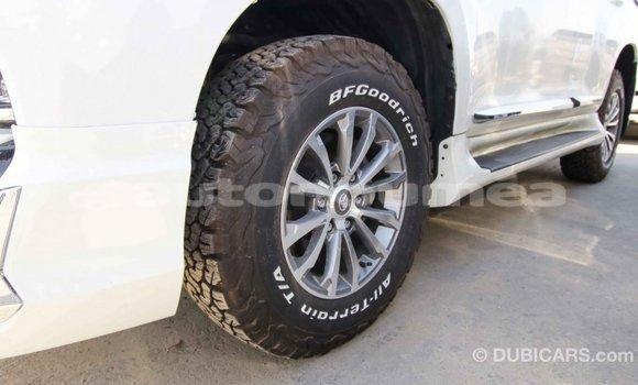Acheter Importé Voiture Toyota Prado Blanc à Import - Dubai, Iles