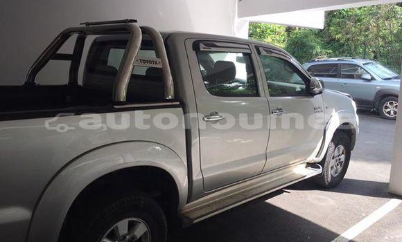 Acheter Occasions Voiture Toyota Hilux Autre à Moindou au Sud