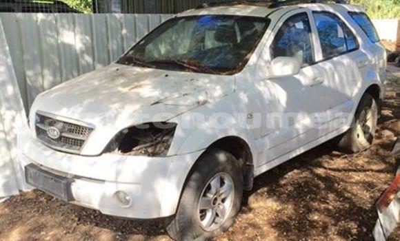 Acheter Occasion Voiture Kia Sorento Blanc à Kaala Gomen, Nord
