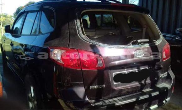 Acheter Occasion Voiture Hyundai Santa Fe Autre à Bourail, Sud
