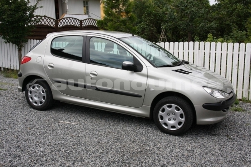 Big with watermark peugeot206